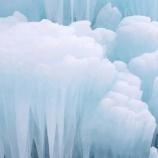 『樹氷』の画像