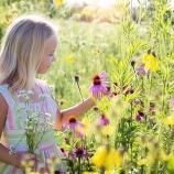 『クソダサい投資家の頭の中はお花畑』の画像