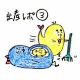 『🐥出産レポ③🐥』の画像