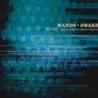 『WANDS 「AWAKE」』の画像