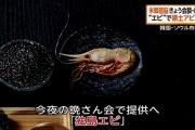 韓国が晩餐会に「独島エビ」、菅長官「どうかとは思う」