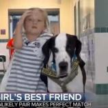 『犬と出会い歩けるようになった少女』の画像
