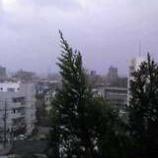 『嵐来襲 (-o-;)』の画像