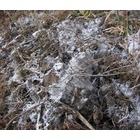 『冬支度』の画像