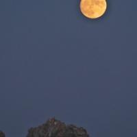 中秋の名月前夜の月
