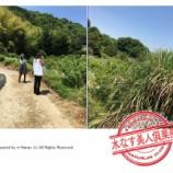 『泉州水ナスツアー(4)/水なす美人塾』の画像