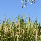 『令和2年度農産物検査員出発式(JAいわて平泉)』の画像
