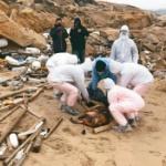【動画】台湾、また「豚の死骸」が離島の浜辺に漂着、現場は封鎖!中国からと推定 [海外]