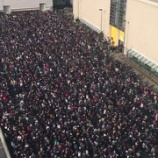 『【乃木坂46】今後のライブ・握手会はこうなる・・・』の画像