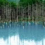 『いつか行きたい日本の名所 白金の青い池』の画像