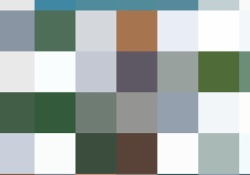 【ポケ森・画像あり】いやらしすぎる事案が発生www←ボルトさん…wwww