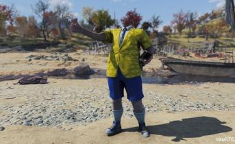 Fallout 76:パッチ14までの不具合の確認とまとめ
