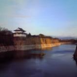 『大阪城の石垣に』の画像