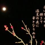『フォト短歌「赤いダイヤ」』の画像