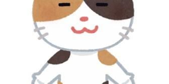 いつも大人しい愛猫が良い感じになってた職場のイケメンの顔面をひっかいた。その傷と猫の毛が原因で職場内で何股もかけていたことが発覚!やっぱ愛猫は間違ってなかったんだね