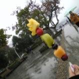 『中国にあるフルーツの串刺し胡芦糖(hurutang)が気になる♥』の画像