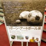 『[イコラブ] リボーン・アートボール展 いおりの作品…【野口衣織】』の画像