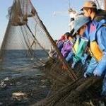 『日本の漁業』 平均所得200万円、平均年齢60歳超…!!