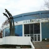 『カナダ ナイアガラ旅行記9 小さなナイアガラ水族館でウーパールーパーを見てカナダに帰国』の画像