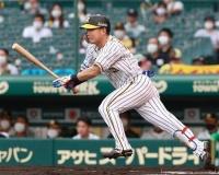 【阪神】糸原が自己最長を更新する8試合連続安打!!