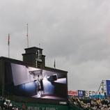 『甲子園~'21.7月① 阪神vs.ヤクルト「トラフェスTシャツプレゼントデー」』の画像