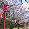 2021/3/18~22 和歌山滞在記⑨ 第二次世界大戦の戦没者英霊を祀る神社『護国神社』に雨の中参拝しました。