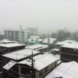 『雪化粧の戸田市 美しく静寂な成人の日です』の画像
