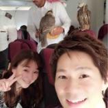 『機内に鷹?』の画像