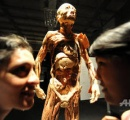 ローザンヌで人体標本展を中止 中国で拷問され処刑された受刑者らの遺体が含まれている可能性