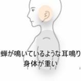 『セミが鳴いているような耳鳴り』の画像