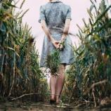 『【再編集】ネトゲ廃人だった俺が運命の女性と出会った』の画像