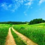 『✨夏✨といえば⁉️』の画像