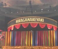 【欅坂46】ひらがなけやき武道館2日目ライブセトリ・感想まとめ!