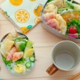 『冷蔵庫の残り物で天ぷら弁当』の画像