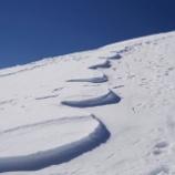 『春のシュカブラと雪崩アート』の画像