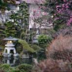 庭師のすすめin箱根