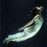 『112歳の淡水魚を発見❗️人より長く生きる魚たち』の画像