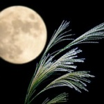 「月はもともと地球の一部だった」←これマジ!?