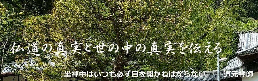 坐禅の仕方と悟り,見性,身心脱落:魯山貫道老師の庵 まとめサイト イメージ画像