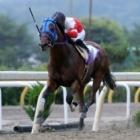 『【水沢・栗駒賞結果】プレシャスエースが単騎逃げから粘り込んで重賞初V』の画像