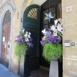 『イタリアの香り No.1』の画像