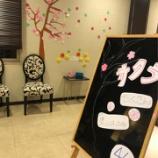 『桜の季節【篠崎 ふかさわ歯科クリニック】』の画像