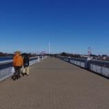 『2月の多摩湖』の画像