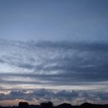 『台風の あとに』の画像