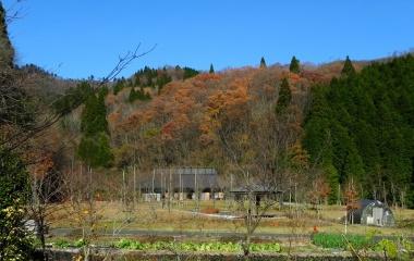 『新庄村 田浪 毛無山 Nov.25,2012』の画像