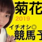 【競馬予想】菊花賞 2019  高評価、チャンネル登録、コメ...