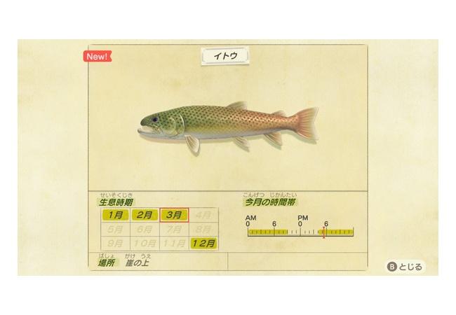 【あつまれ どうぶつの森】イトウを釣る条件は?3月まで
