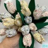 『花の季苑/布のチューリップ』の画像