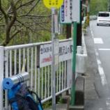 『2011/5/3鴨沢から石尾根下、雲取山荘』の画像