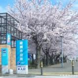 『【綾瀬市シリーズ】綾瀬市役所・光綾公園の桜』の画像